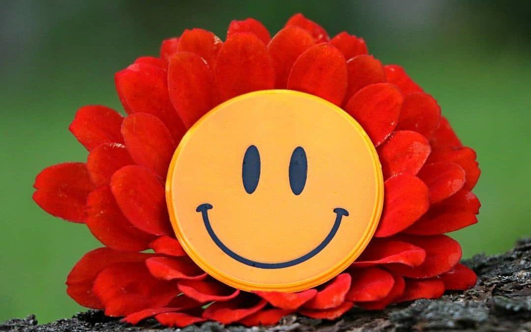 Feliz dia da Felicidade